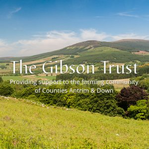 Web Design – The Gibson Trust