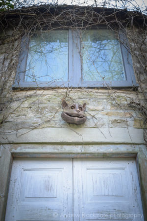 The Cheshire Cat Face bronze sculpture (at Kilver Court, Somerset) by Robert James Workshop
